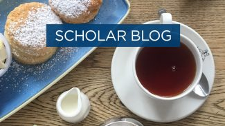 Scholar blog - most British things