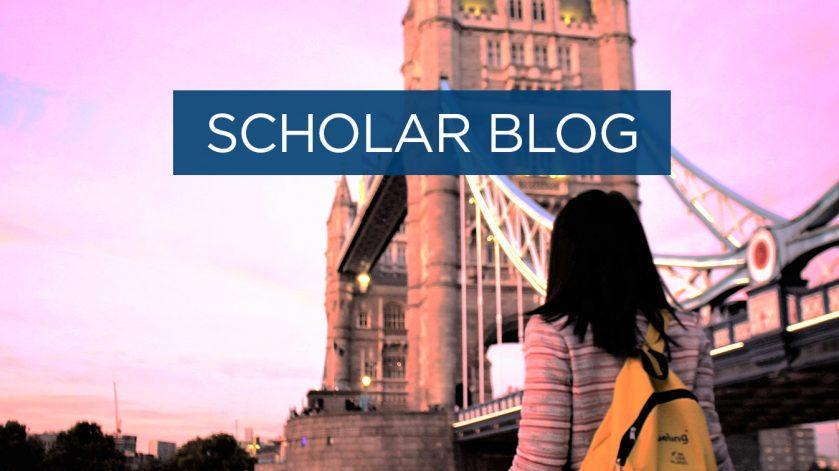 Scholar blog - bridges that caught my eye