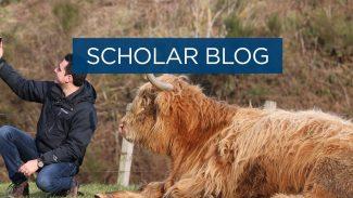 Scholar blog: Animals that stole my heart - Highlands Cow edition