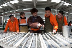 Geologists in Mongolia
