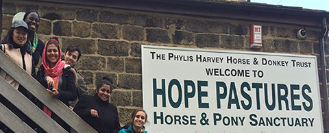 Getting our hands dirty at Hope Pastures Horse & Pony Sanctuary