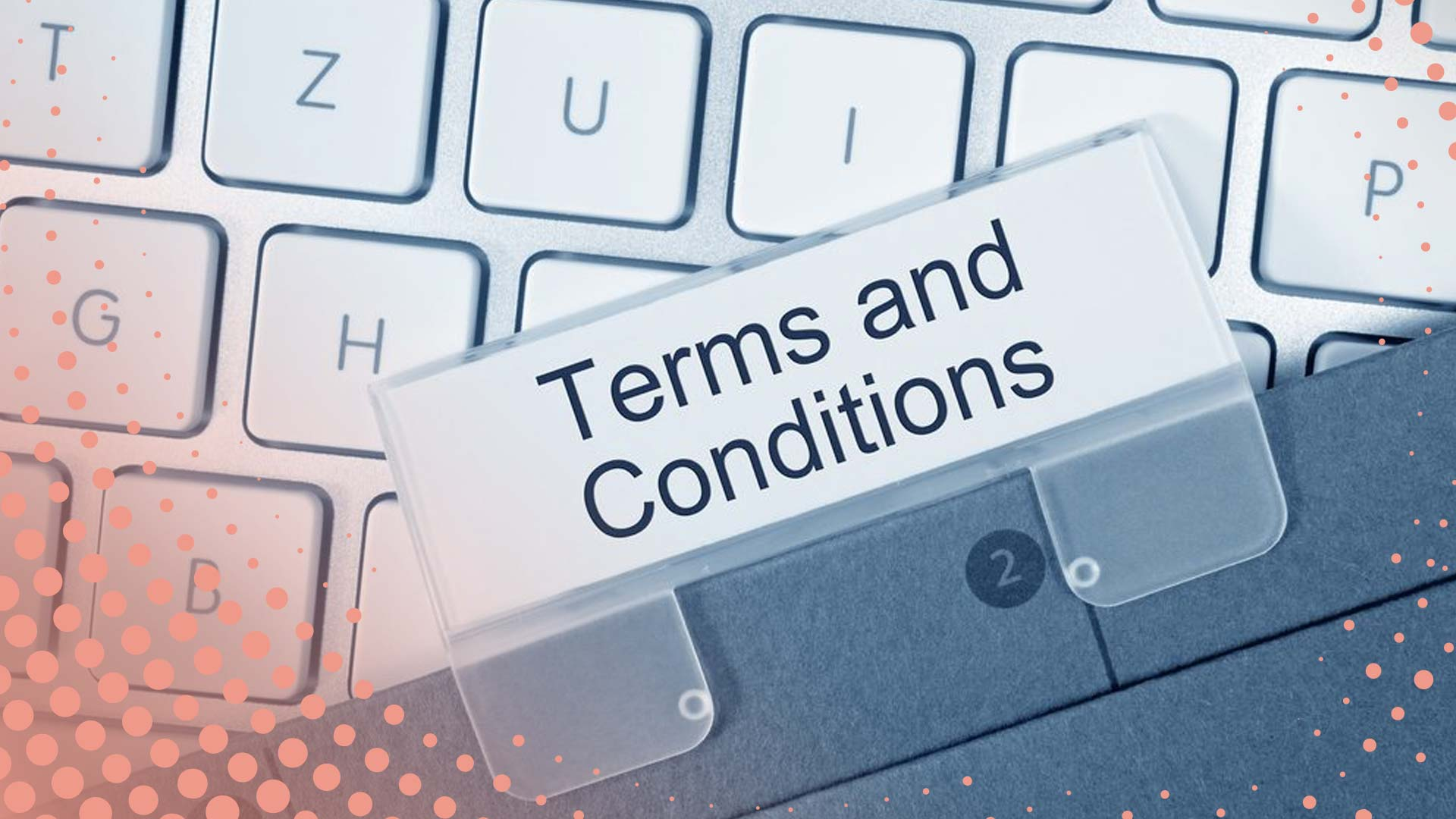 Terms and conditions - Fellowships