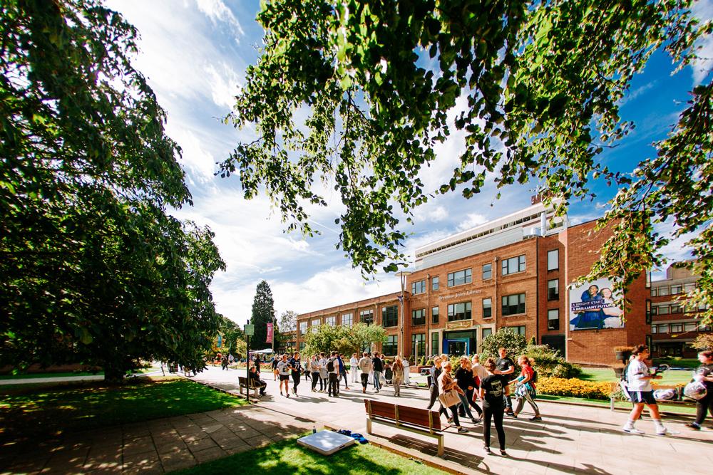 The University of Hull