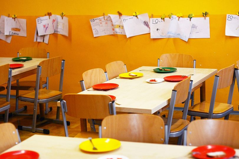 Sustainable food environment for children: the potential of school meals